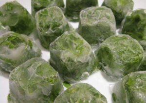 Заморозка зелёного лука