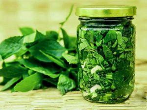 Какую же пользу организму приносит свежая зелень