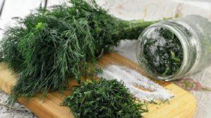 Способы заготовки укропа на зиму с сохранением аромата
